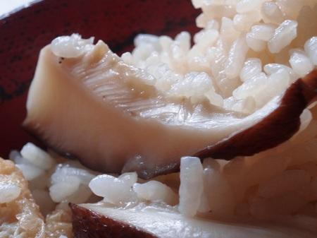 Food1_43